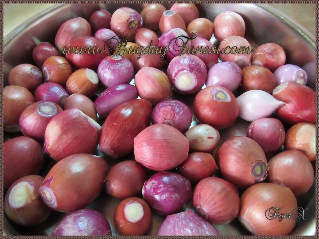 Temizlenmiş Soğanlar