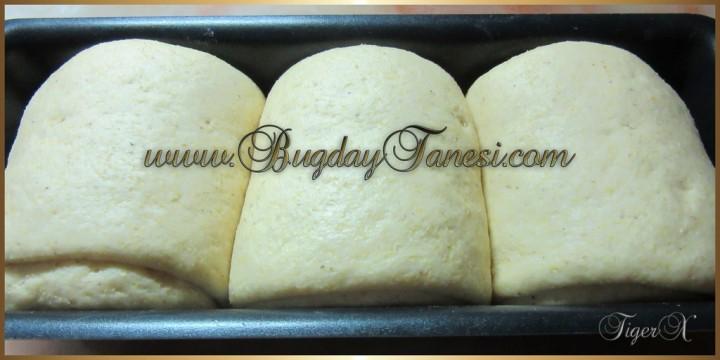 Mısır Ekmeği_1 (1024x768)